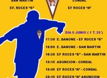 TORNEO PROFUTBOL 2014