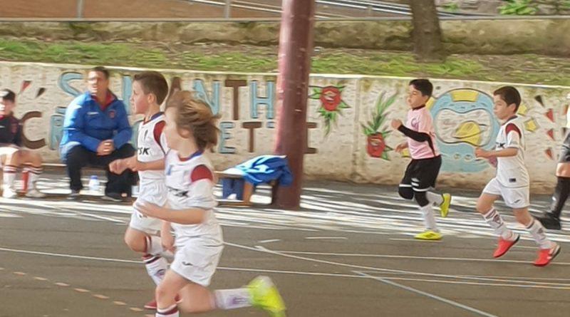 Segunda Prebenjamín: TSK Roces B 5-7 E.F. Jin